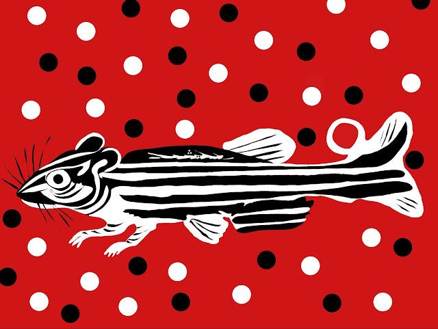 Zebrafish and rat chromo splice
