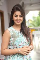 Nikki Galrani at Prema leela pelli gola trailer Launch ~  Exclusive 062.JPG