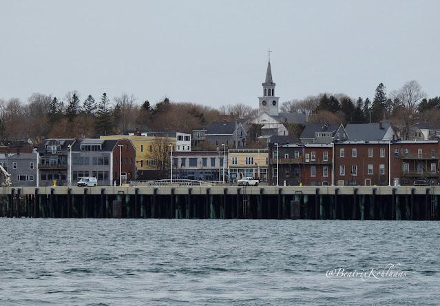 Waterside of Eastport, Maine