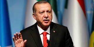 Erdogan: Kami Sudah Bebaskan 109 Km² Wilayah Timur Laut Suriah
