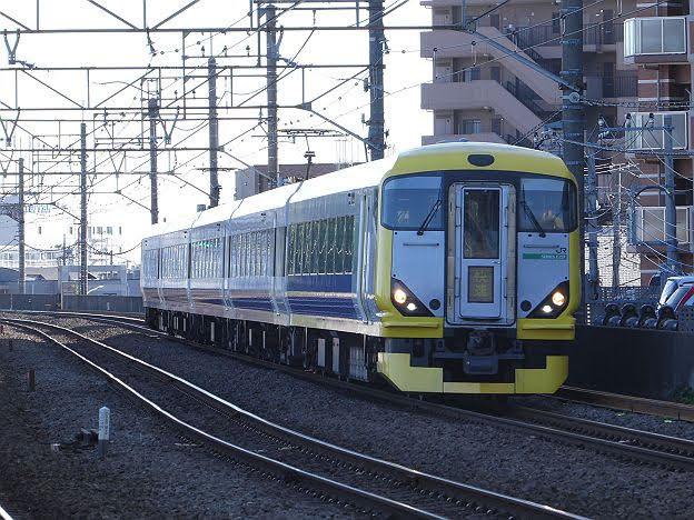 【まさかの専用HMは?】快速ホリデー快速鎌倉 鎌倉行き E257系
