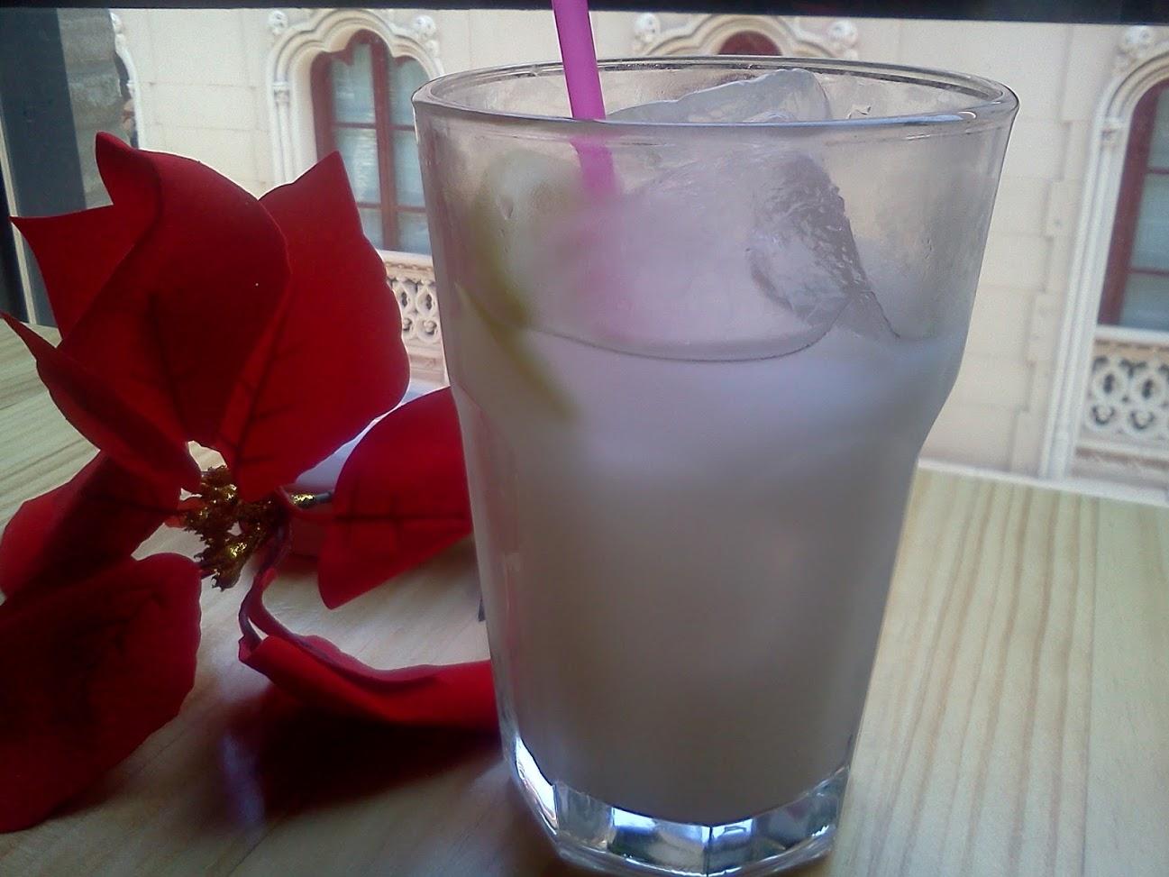 flor de natal poinsétia
