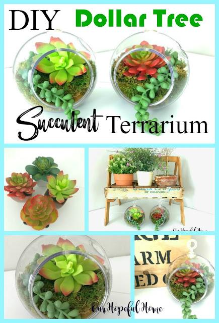 succulent terrarium diy houseplant faux plant