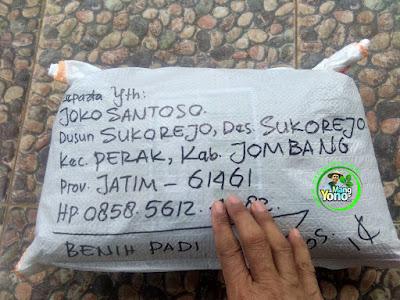 FOTO 2 : Benih Padi TRISAKTI   Pesanan Joko Santoso Sesudah di Packing