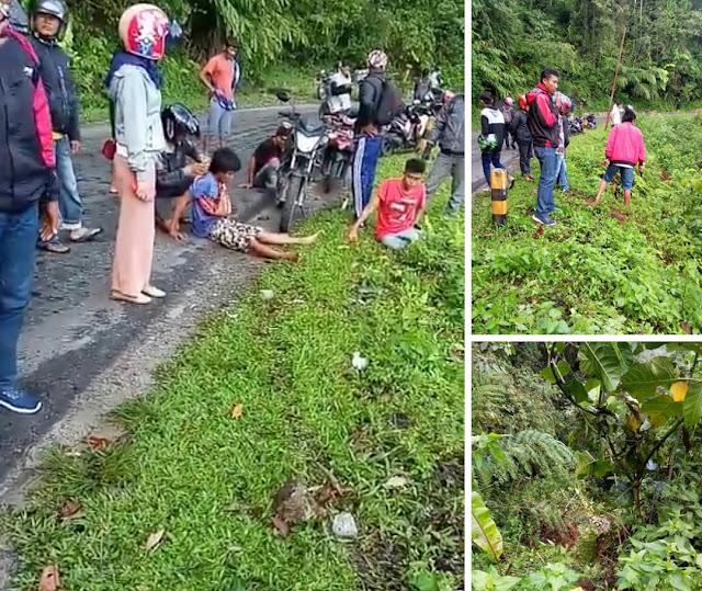 Laka Tunggal, Mobil Angkut Sayur  Terjun ke Jurang di Poros Toraja-Palopo
