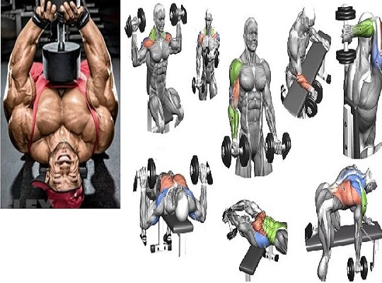 The 4-Week Dumbbell Workout Plan: Shoulders