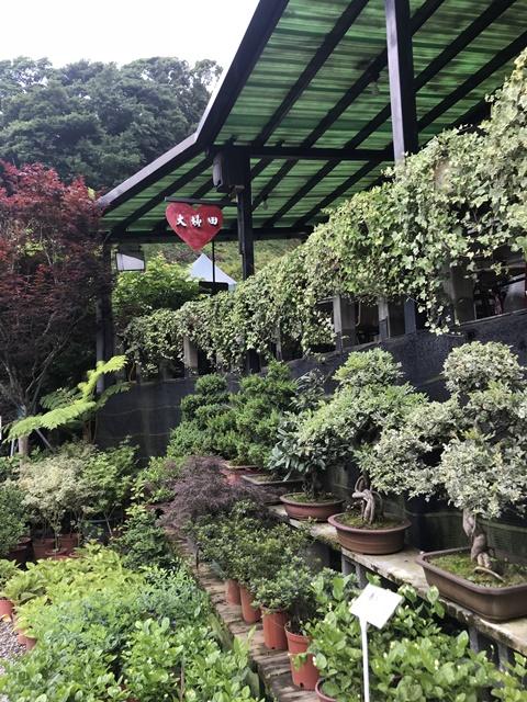 大梯田花卉生態農園