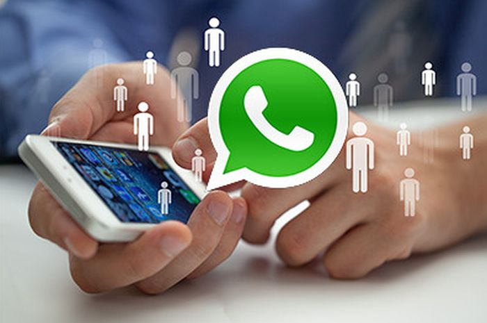 Jasa Whatsapp Bisnis | Jasa Whatsapp Blast | Jasa Iklan Google Ads