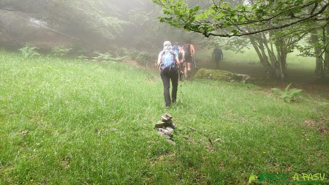 Pradería a la salida del Monte Fana