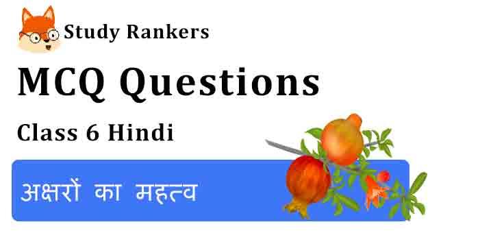 MCQ Questions for Class 6 Hindi Chapter 5 अक्षरों का महत्व Vasant