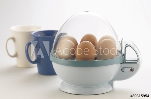 Top 10 Egg Boiler in India