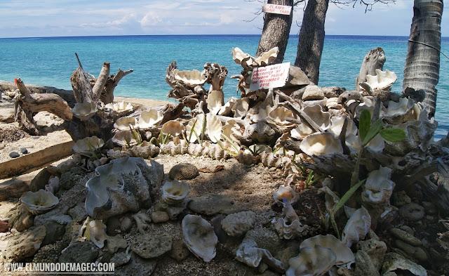 Camiguin-la-isla-verde-que-ver-hacer-entorno
