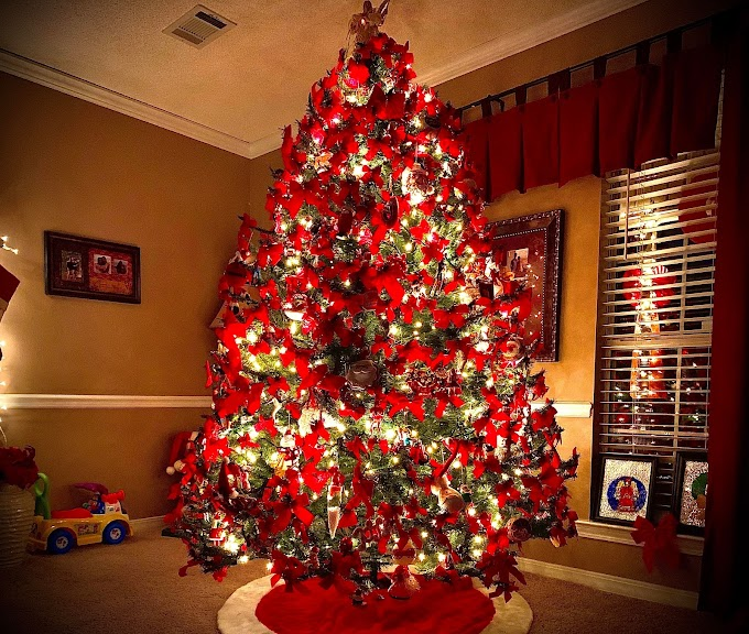 Today's Photo and Topic - December 25, 2020 🎀🔔Merry Christmas🎅🎄
