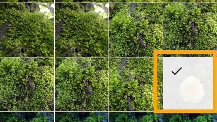 Cara menggunakan InShot di iPhone