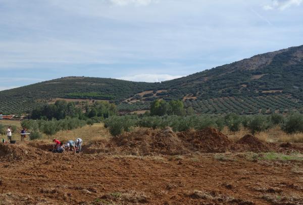 Segunda campaña de excavaciones en el yacimiento paleolítico de El Sotillo (Ciudad Real). Foto: CENIEH