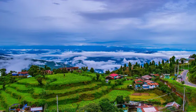 Darjeeling tour operators say authorities need to decide on allowing visitors in hills