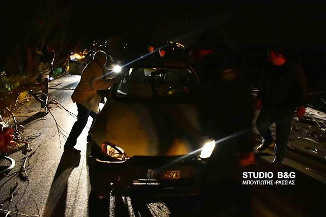 Άγιο είχε οδηγός στο Ναύπλιο - Έπεσε δεντρό μπροστά στο όχημα του την ώρα που οδηγούσε (βίντεο)