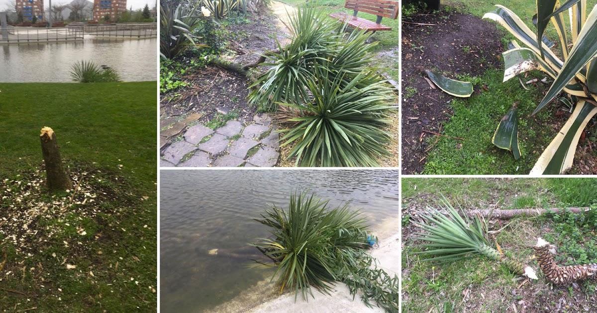 Barakaldo digital v ndalos causan destrozos en rboles y for Arboles del jardin botanico