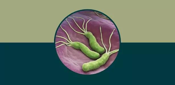 اكلات تقتل جرثومة المعده, علاج الجرثومة بالاعشاب, اكلات لمرضى جرثومة المعدة, الاطعمة التي تقضي على جرثومة المعدة
