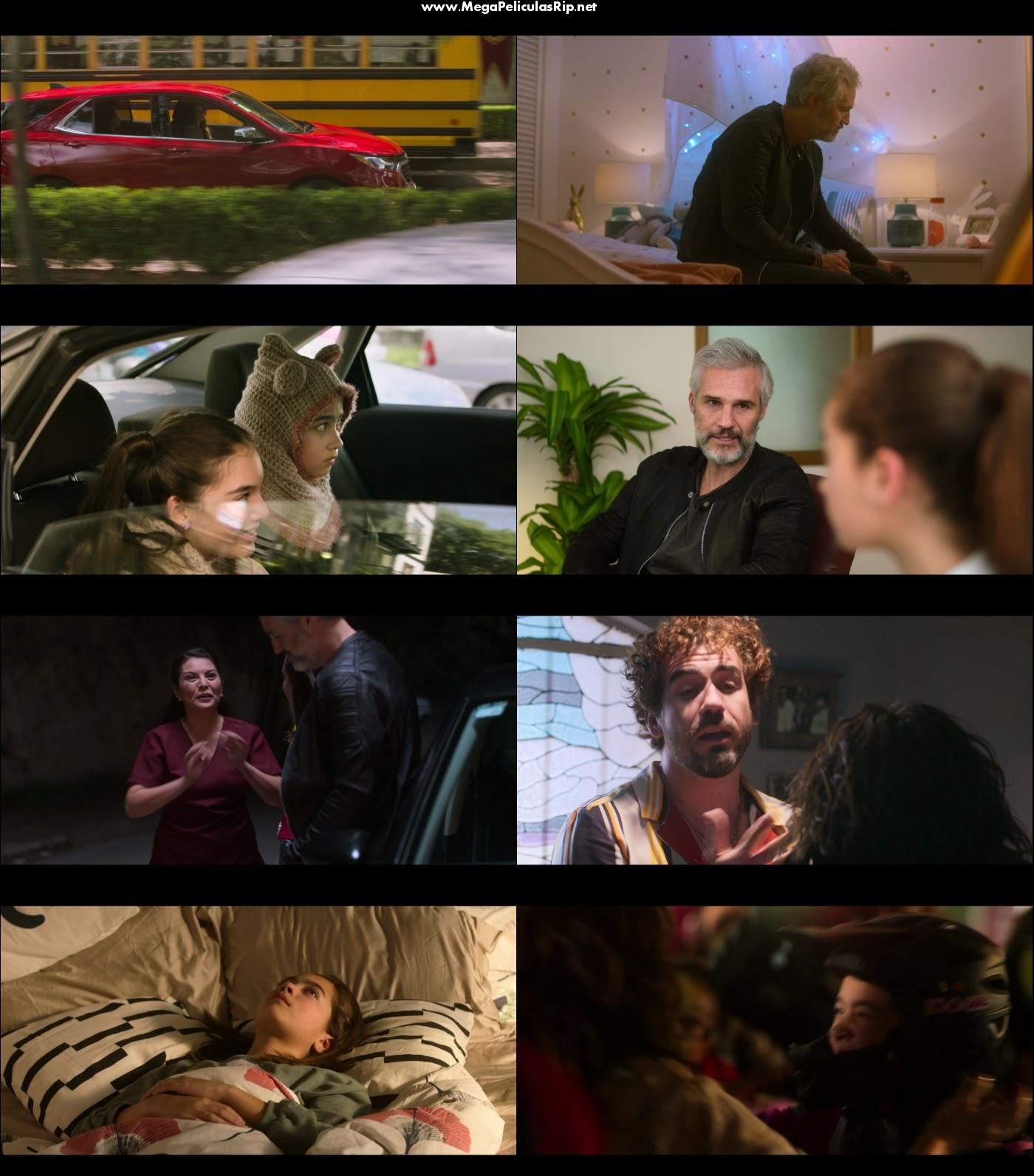Se Busca Papá 1080p Latino