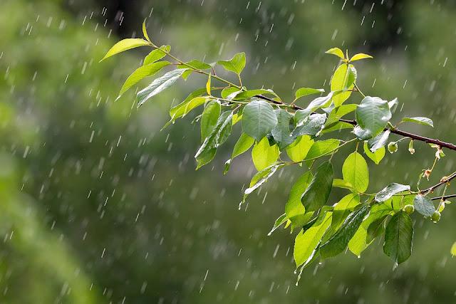 Perbedaan Dan Persamaan Metode Pengamatan Data Curah Hujan