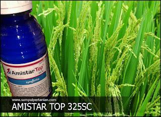 AMISTAR TOP 325SC Fungisida+ZPT bahan aktif Azoksistrobin dan Difenokonazol