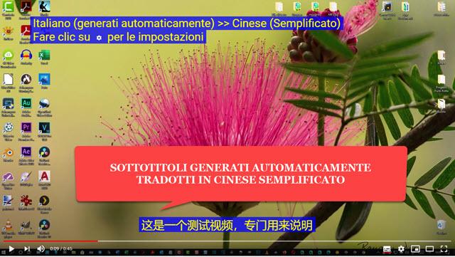 traduzione automatica dei sottotitoli