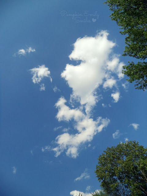 Clouds that look like a seahorse