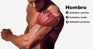 posición de la mano en el hombro en comunicación no verbal