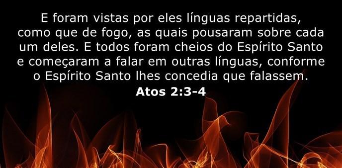 E foram vistas por eles línguas repartidas, como que de fogo, as quais pousaram sobre cada um deles. E todos foram cheios do Espírito Santo e começaram a falar em outras línguas, conforme o Espírito Santo lhes concedia que falassem.
