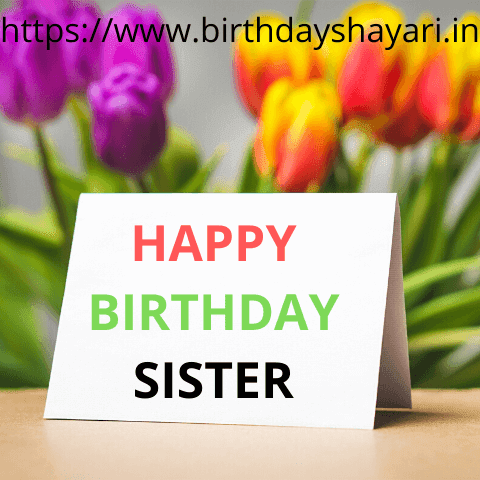 Birthday Wishes For Sister In Hindi And English Birthday Sms For Sister In Hindi 140 Happy Birthday Hindi Status