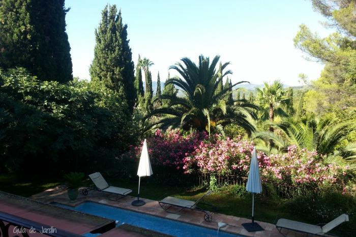 Vistas de la piscina y el jardín