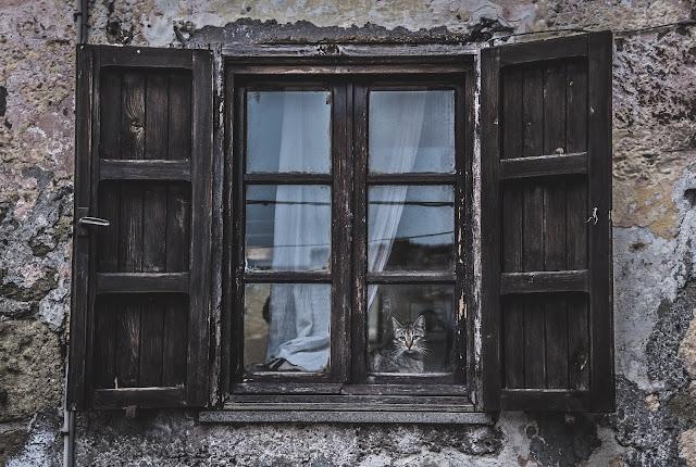 wooden windows:Photo by Mauricio Artieda on Unsplash