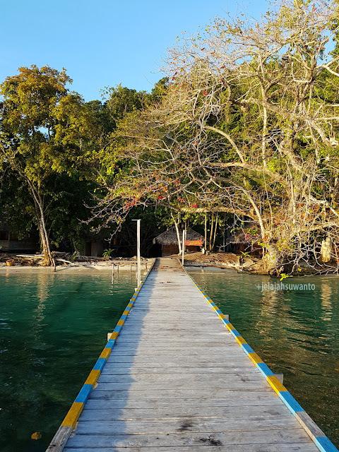 Ketapat laut banyak manfaat di Talaip Homestay, Raja Ampat +jelajahkeluargasuwanto