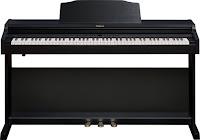 Roland RP500