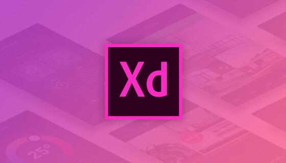 تحميل برنامج Adobe XD اخر اصدار 2020 مجاناً برابط مباشر