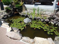 敦盛首洗い池