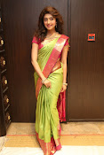 pranitha glam pics in saree-thumbnail-4