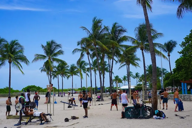 The Best Things to Do in Miami (Florida), USA