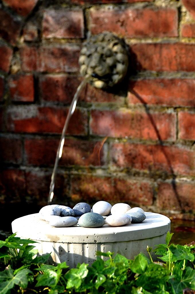 Feuerschale vor Brunnen-Beton selber giessen-Anleitung