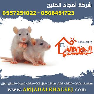 شركة ابادة فئران بالمدينة المنورة 0568451723