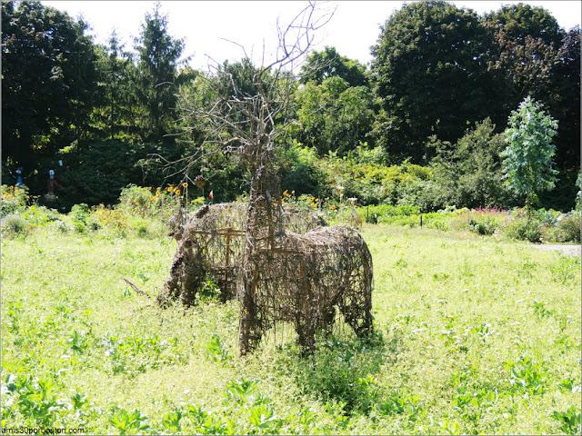 Esculturas de Ciervos en el Jardín Botánico de Montreal