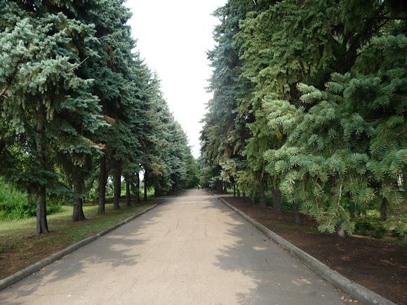 Донецк. Ботанический сад