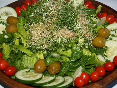 Tips Diet Atkins agar Berjalan Sukses
