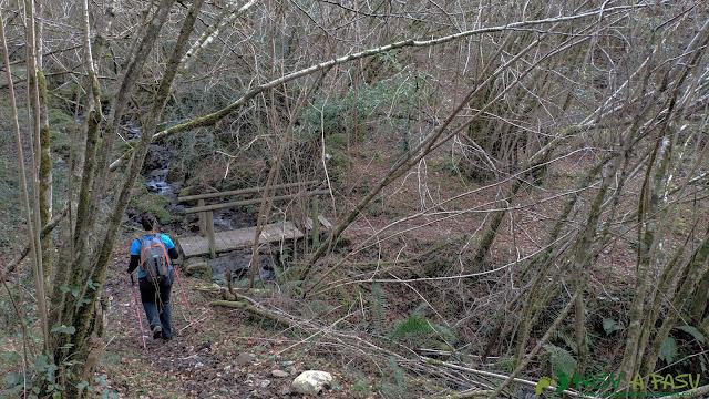 Puente sobre la Riega Bramador