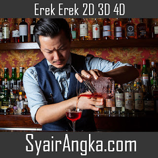 Erek Erek Menjadi Bartender 2D 3D 4D