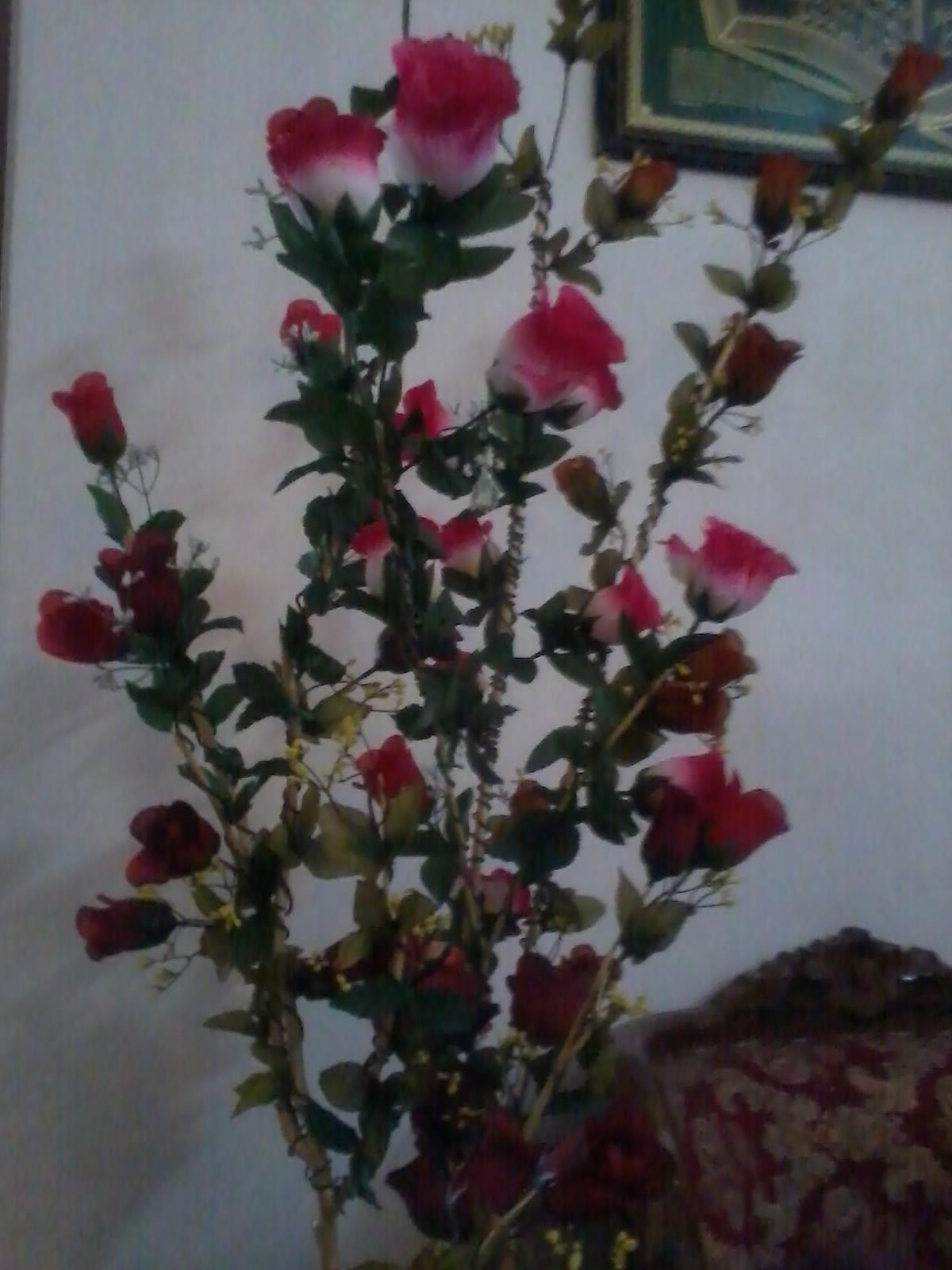 Terbaru 13 Macam Macam Gambar Bunga Plastik Koleksi Bunga Hd Macam macam bunga plastik