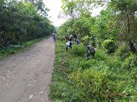 Bukti Soliditas TNI-Rakyat, Babinsa Kodim 0311/Pessel Gelar Karya Bhakti Bersama Warga