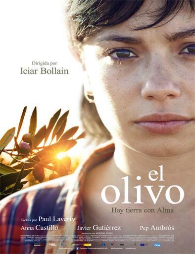 Ver El olivo (2016) Online