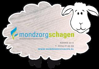 www.mondzorgschagen.nl